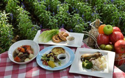 La buena nutrición se sustenta «en ajustar la cantidad y la calidad de nutrientes para cada persona»