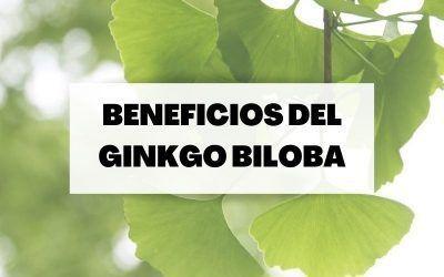 Todo sobre el Ginkgo Biloba: Indicaciones y beneficios para la salud